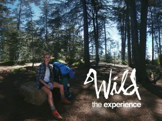 Wild: The Experience